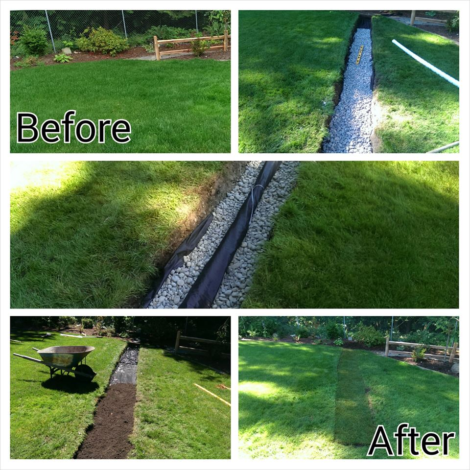 Studenthelpers Org French Drains